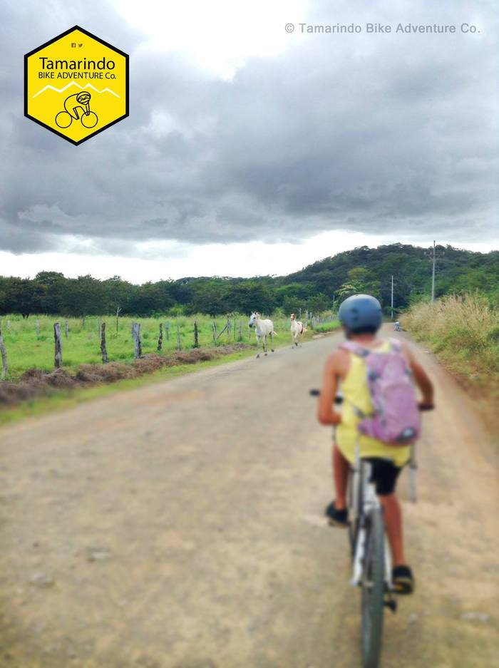 Mountain bike tours local scenery by Tamarindo Bike Adventure Co  in  GU